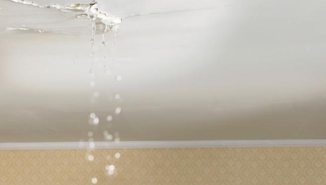 Roof Leak Repair Ceiling leak in Portland