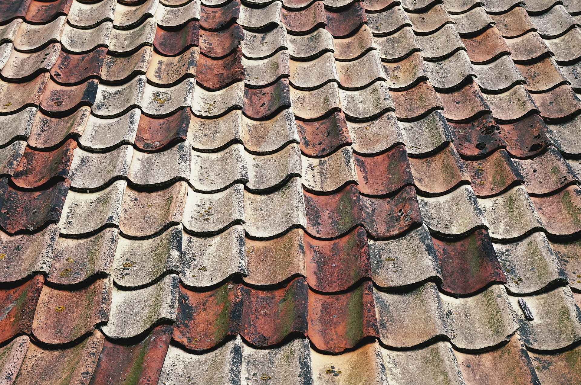 Roof Problems Shingle Repair Process