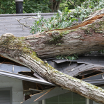 Inspecting Your Roof for Damage-When Should You Have Your Roof Inspected in the Atlanta Area_- SRC Select Roofing Consultants