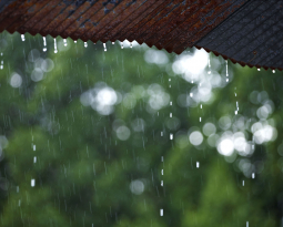 Signs Your Home Needs Roof Leak Repair